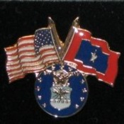 Air Force Veterans Flag Pin
